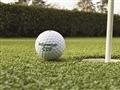 Césped sintético golf le robinie 5