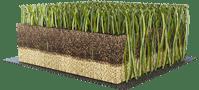 campo-de-rugby-hierba--sintetica